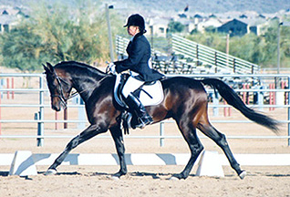 Ahmed Fabo  -  Diana Johnson photo at the Saguaro Classic Arabian Show