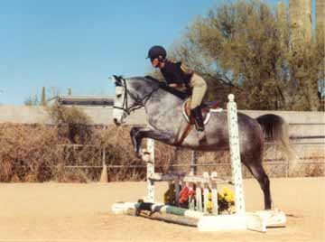 Fa Maarlina learning to jump with Jackie Krueglic.  Maarlina is owned by Elaine Yerty of Texas.  Diana Johnson Photo