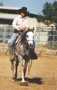 Shalima graduated to arena work at less than 7 rides.  At less than 14 rides she was out on the desert trails.