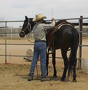 Shown here with Randy Sandidge on the occassion of his 1st offical saddling  -  May 2002 Tammy Sandidge photo