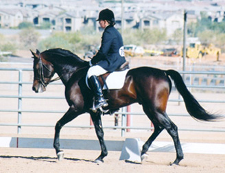 Ahmed Fabo - Saquaro Classic Arabian Horseshow  -  Dec. 2002 Diana Johnson Photo